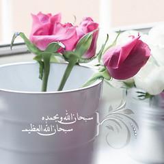 :) (durooob) Tags: mms phone الله الحياة صباح اسلاميات اذكر بلاك وسائط اذكار بيري ادعية