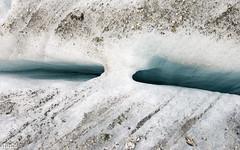 Glacier au pied du refuse Albert Ier (yakatof) Tags: travel mountain france alps green nature montagne alpes nikon albert rando glacier nikkor vue 1er refuge 1635 d600 ier