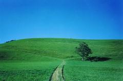 memories of Hunsrck-hills... (hans j. knospe) Tags: germany poem hills robertfrost theroadnottaken hunsrck