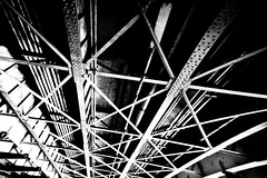 Crocodile Tears (Thomas Hawk) Tags: bridge bw usa austin google texas unitedstates unitedstatesofamerica dell fav10 photowalking photowalking091711 photowalking09172011
