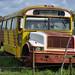 Bus abbandonato