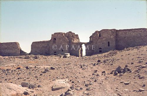 Halebiyeh