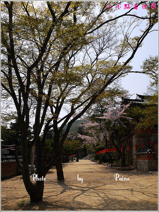 釜山梵魚寺 (56).JPG