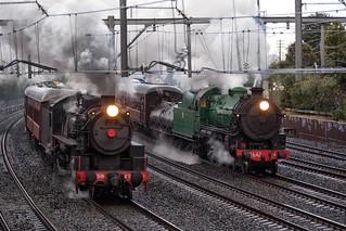 The Sydney Train Race