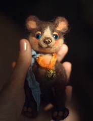 DSC_0047 (olesyagavr) Tags: bear teddy felting