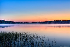 20140601 Beaverdam Reservior024 (Dan_Girard_Photography) Tags: horse reflection nature water sunrise 2014 loudoncounty dangirardphotography beaverdamreservior