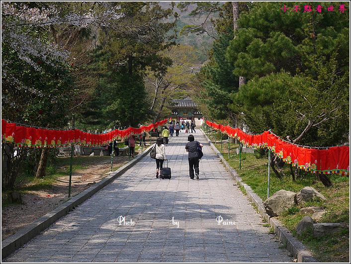 釜山梵魚寺 (11).JPG