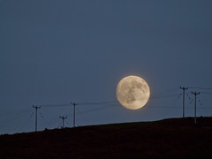the moon- caught in the wires-6112088 (E.........'s Diary) Tags: june scotland ross fife olympus eddie newburgh 2014 e620 newbueddierossolympuse620june2014newburghfifescotlandnewburghsunsetrivertayscotlandgloaming