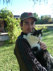 San Javier cat named Rita 2