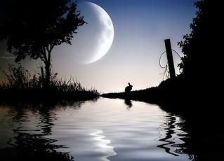 Sueño de una noche de Verano...