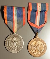 Medaglia commemorativa della 9 Armata della Campagna di Grecia e Jugoslavia in argento e bronzo (claudio g) Tags: macro army 9 grecia medaglia jugoslavia armata