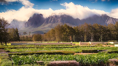 Vergelegen Wine Estate (WelshPixie) Tags: mountains landscape southafrica hdr westerncape hottentotsholland vergelegen