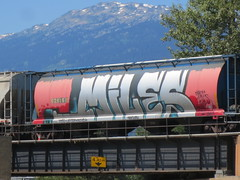 Graffiti car (jamica1) Tags: railroad canada bc railway columbia british revelstoke