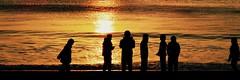 Yumigahama Beach Sunrise in Minamiizu Town, Shizuoka, Japan (izunavi) Tags: sea beach japan sunrise shizuoka izu  minamiizu yumigahama  colorprocess  yumigahamabeach minamiizutown twittercover japans100greatestbeaches