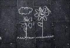 barcelona city flowers urban blackandwhite flores... (Photo: Aviones Plateados on Flickr)