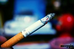 Random (mexygio) Tags: cigarette smoking cigarettes winston sigaretta
