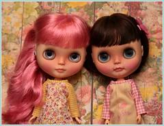 My Darling Duo