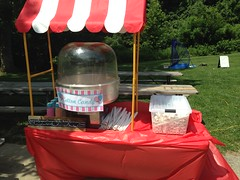 """St. Louis Snow Cones Cotton Candy • <a style=""""font-size:0.8em;"""" href=""""http://www.flickr.com/photos/85572005@N00/14733260611/"""" target=""""_blank"""">View on Flickr</a>"""
