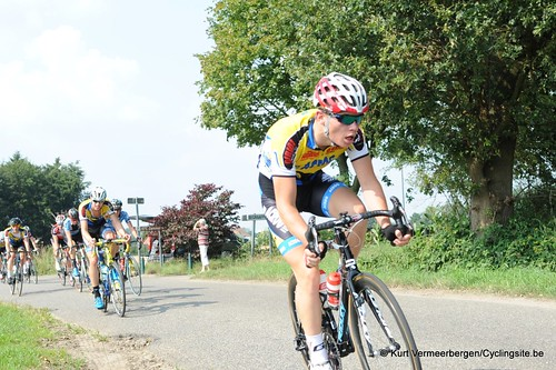 Geel Oosterlo  (103)