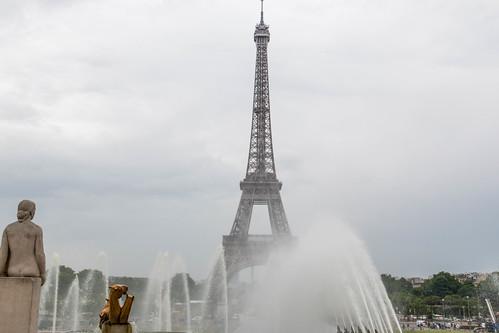 Un regard sur la Tour Eiffel