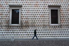 (Antonio_Trogu) Tags: street windows italy man building facade italia streetphotography pedestrian walker ferrara emiliaromagna palazzodeidiamanti finestre antoniotrogu