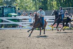 DSC_0181-1 (Glenn Fullum) Tags: nikon barrels hose chevaux baril gymkhana d5200