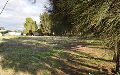 Lots 1,2,3 Evelyn street, Eugowra NSW