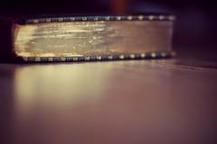 Gilt Edged (Benn Gunn Baker) Tags: reflection field canon gold reading book baker material shallow depth benn gunn gilt edged 550d t2i