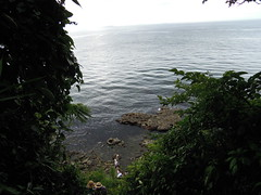 DSCN0399 (takumi_kobayashi1) Tags:     2014814
