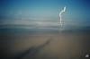 Dreamtime Landscapes (Jared O'sullivan) Tags: nsw dreamtimebeach fingalheads treeshanginoutinthesunishine jos2014