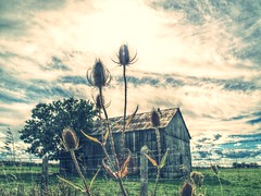 back road (beachbum prints) Tags: sky clouds barn fence landscape weeds country sarnia discoveron shareyourweather discoveron