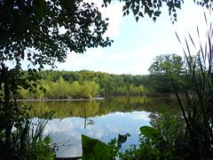 Herrensee (kirstenreich) Tags: lake see natur landschaften strausberg herrensee