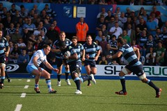 Cardiff Blues v Glasgow Warriors, Guiness Pro 12 2014, BT Sport Cardiff Arms Park (Sum_of_Marc) Tags: park game sport wales arms rugby glasgow union cardiff blues pro match warriors 12 guiness bt 2014 pro12 cardiffarmspark rugbyunion armspark