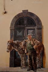 Murale - Il contadino con l'asino (lumun2012) Tags: sardegna canon eos sardinia 7d murales lucio paints dipinti borore mundula tamronxrdi1750