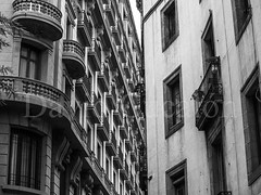 Collage (David Cucaln) Tags: barcelona street city blackandwhite blanco architecture buildings photography calle arquitectura edificios y negro optical ciudad olympus compression fotografia effect efecto 2014 callejera e510 compresion optico cucalon 1442mm davidcucalon