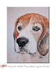 Harry the Beagle (wandklex Ingrid Heuser freischaffende Künstlerin) Tags: portrait holiday colour art ingrid beagle water silver germany watercolor painting gold golden miniature glamour foto handmade kunst magic porträt card gift surprise watercolour geschenk greeting luxury luxus kennel echse drache quickies kunstwerk silveredition aquarell ratzeburg malerei miniatur gemälde wasserfarbe agame heuser bartagame jagdhund unikat überraschung züchter einzelstück goldedition gruskarte gruskarten metaledition
