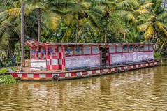 Taxi! (gecko47) Tags: india kerala backwaters canals waterway boat craft watertaxi ferry publictransport