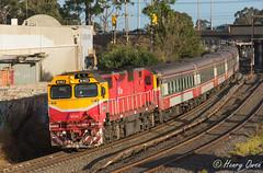 Albion Albury (Henrys Railway Gallery) Tags: n463 nclass emd diesel clyde 8625 albion vlinepassenger vline albury