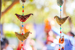 Decorations (VikramDeep) Tags: partapgarhfarms haryana india sunday holi holiday 50mm f18canon eos550d bokeh nature