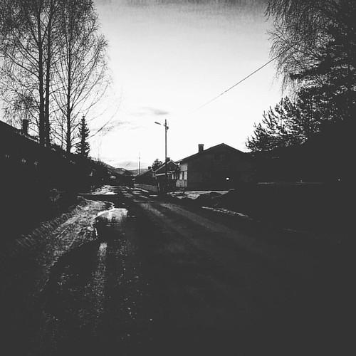 Langs veien.