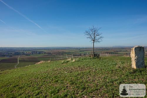 Wanderung Mittleres Selztal (mit Donnersberg)