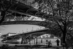 (ivmi, Budapest HU) Tags: budapestagram budapest hungary streetphotography monochrome blackwhite fujifilm x100f fujix100f margitsziget