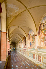 One of the Cloisters of the Abbey of Monte Oliveto Maggiore, Tuscany showing some of the famous frescos (Peter Noyce) Tags: travel italy building travelling history classic church abbey buildings painting italian europa europe paintings sienna property historic tuscany historical siena traveling toscana fresco travelled traveled tuscan asciano abbaziadimonteolivetomaggiore verticalformat abbeyofmonteolivetomaggiore peternoyce