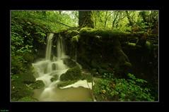 Petite Cascade en amont du ruisseau D'Arloz-Dessous - Jura (francky25) Tags: en du jura cascade franchecomté petite ruisseau amont darlozdessous