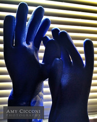 Blue Rubber Gloves (amycicconi) Tags: blue hands hand finger fingers gloves glove rubbergloves rubberglove iphoneography
