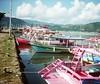 Boats (----------------------xxx-----------------------) Tags: travel brazil film latinamerica southamerica brasil analog 35mm lomo lomography cosina may 35mmfilm brazilian analogue grainy cosinacx2 cx2 2014 picmonkey:app=editor