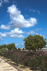 Nubes en El Puerto HDR (cives-expat) Tags: street españa clouds landscape spain paisaje nubes andalusia calles elpuertodesantamaría
