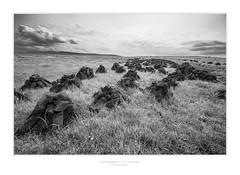 Connemara - Co. Galway (Rense Haveman) Tags: bw clouds landscape blackwhite cogalway atlantic connemara bog turf fuel carna pentaxk5 rensehaveman vakantieierland2014