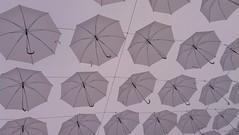20140615_003 (lo_Spocchioso) Tags: umbrellas jolla ombrelli