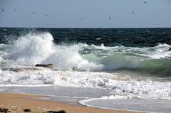 Un peu de fraîcheur - Some freshness (BrigitteChanson) Tags: sea mer beach mar brittany mare waves bretagne playa breizh vague plage morbihan olas spiaggia onde etel